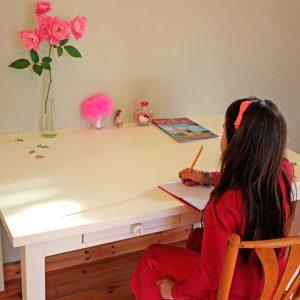 שולחן כתיבה מעוצב לחדר ילדות 7