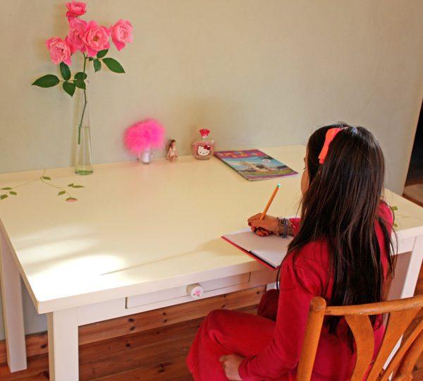 שולחן כתיבה מעוצב לחדר ילדות 4